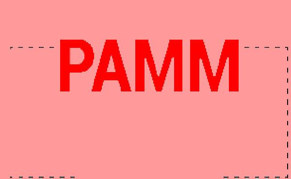 حساب پم PAMM چیست و چه کاربردی دارد