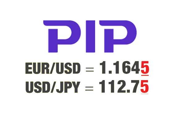 پیپ PIP در فارکس چیست و چگونه ارزش هر پیپ را محاسبه کنیم